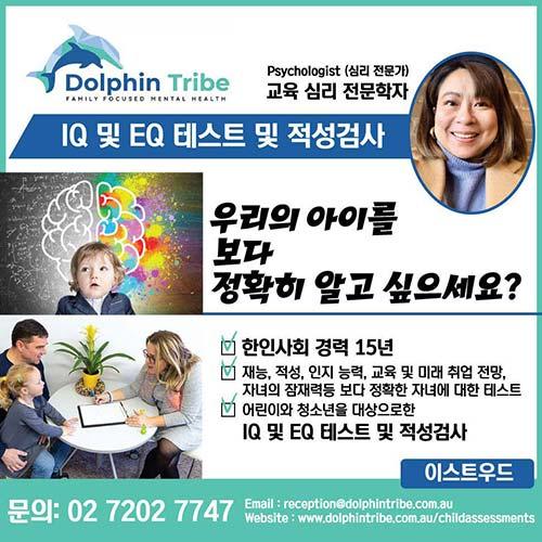 DOLPHIN-TRIBE 교육심리 아이 적성검사
