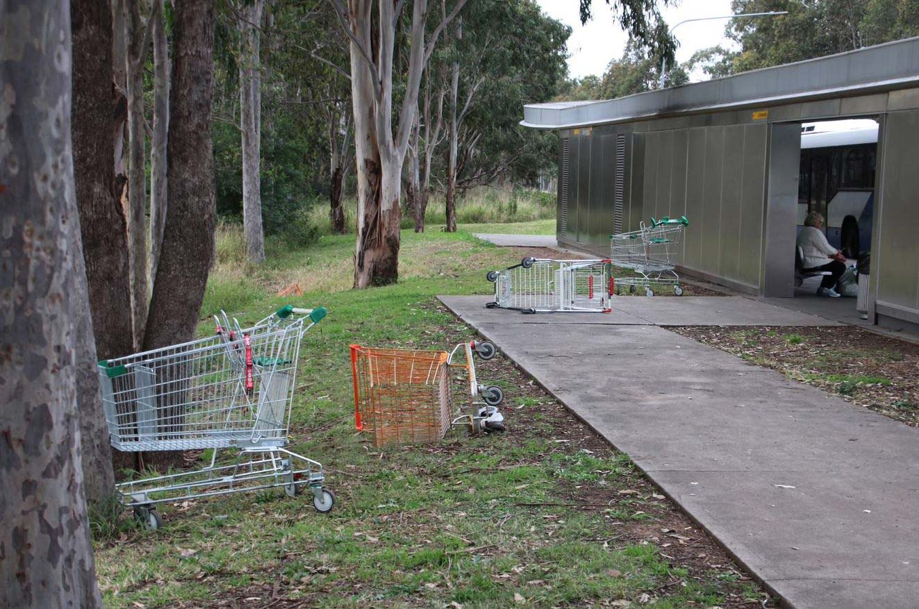 Woolworths-has-committed-to-regular-fortnightly-collections-of-dumped-trolleys.(ABC-News-Tony-Ibrahim)