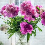 Fresh-flowers-are-one-of-the-luxuries-the-Sydney-nurse-likes-to-have-in-her-house.-Picture-SuppliedSourceSupplied