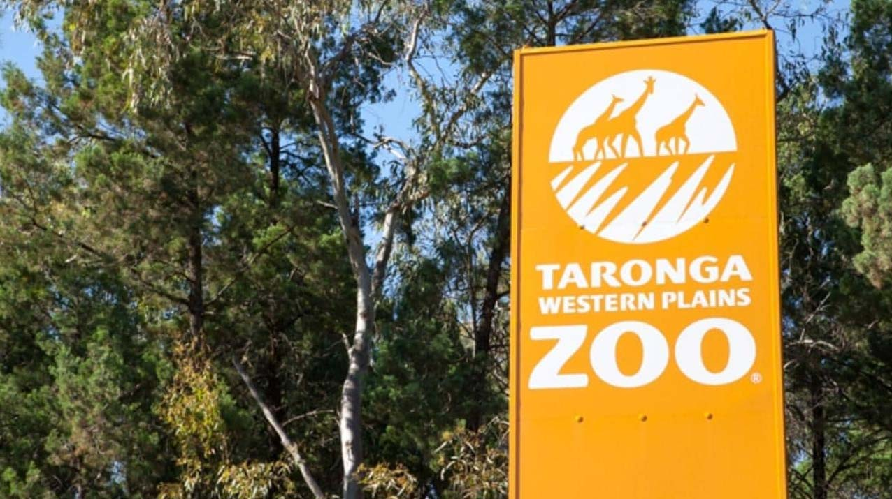 The guests went to Dubbo Western Plains Zoo. Picture SuppliedSourceNews Corp Australia