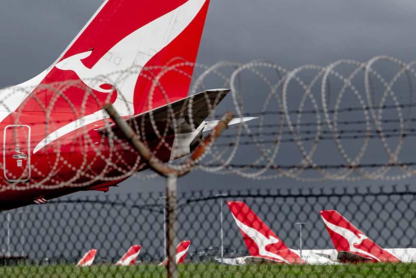 Lockdowns mean Qantas is flying at less than 40 per cent of its domestic capacity.(ABC News Brendan Esposito)
